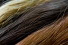 vlasy-02